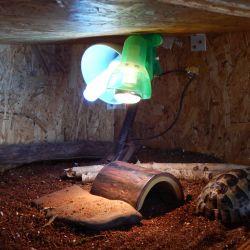 Ubytování pro vaši suchozemskou želvičku